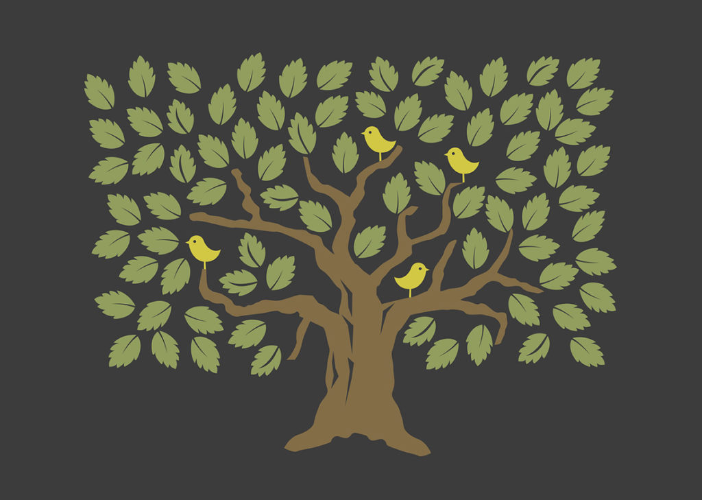 Beplantning Mellomenga Borettslag